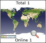Statistiche web professionali